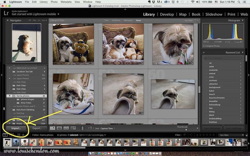 adobe photoshop lightroom tutorial photo - how to import photos into lightroom screenshot 2