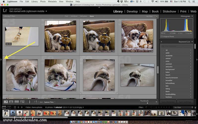 adobe photoshop lightroom tutorial photo - how to import photos into lightroom screenshot 3