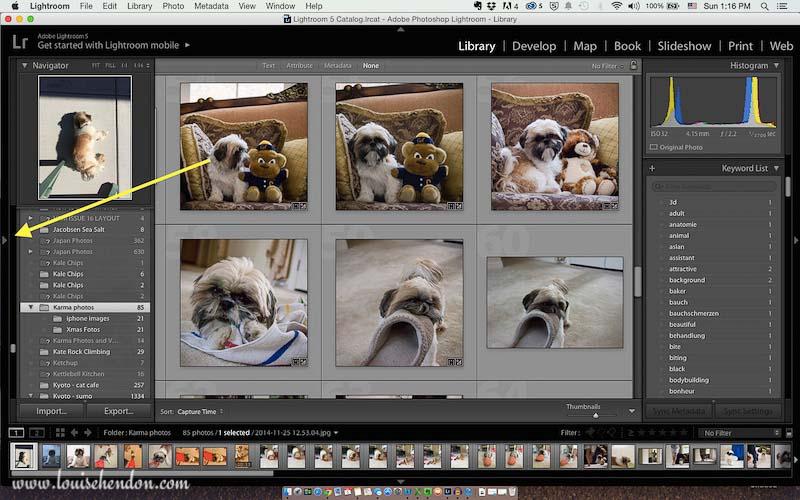 adobe photoshop lightroom tutorial photo - how to import photos into lightroom screenshot 4