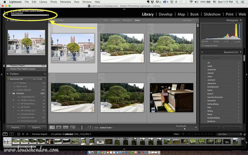 adobe photoshop lightroom tutorial photo - how to import photos into lightroom screenshot 7
