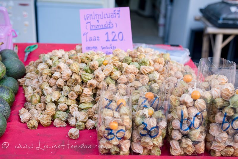 cape gooseberries at bo sang umbrella festival in Thailand - photography